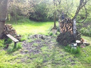 Wood pile and bench in the outdoor workshops and retreats area.